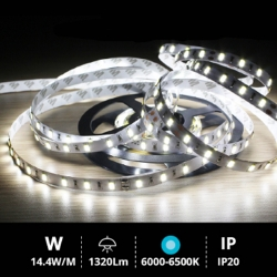 Rollo 5M LED SMD5630 (14.4W) 6000K-6500K IP20 24V